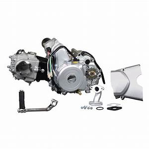 50cc Atv  U0026 Dirt Bike Engine  Compatible With  Baja Motorsports    Monster Scooter Parts
