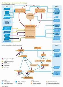 Flowchart Agricultural Economy