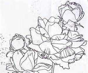 Watercolor Painting Flowers Outline