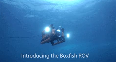 boxfish rov  uhd underwater vehicle robotic gizmos