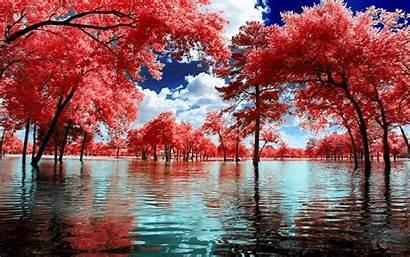 Landscape Nature Surreal Water Trees Park Clouds