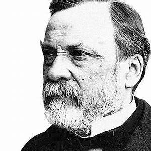 Heroes of Wine: Louis Pasteur (1822-1895) ~ The Wine Stalker