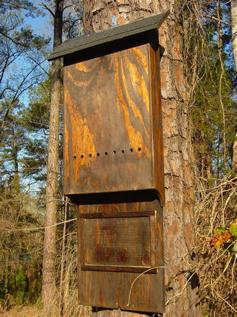 bat house 2 chamber 48 quot x 18 quot x 4 quot