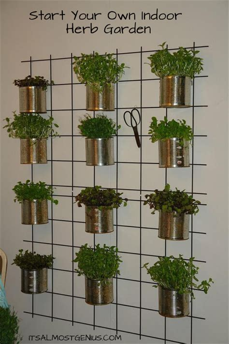 easy diy kitchen herb gardens room bath