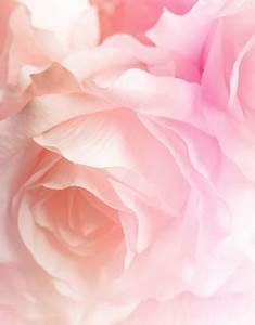 Les Couleurs Qui Vont Avec Le Rose : bleu couleur bleue ~ Farleysfitness.com Idées de Décoration