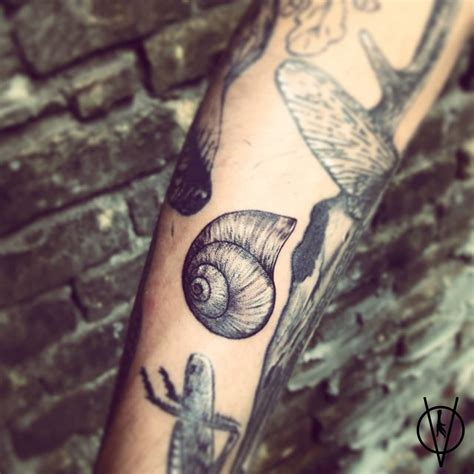 Ankle Band Tattoos snail shell tattoos 1280 x 1280 · jpeg
