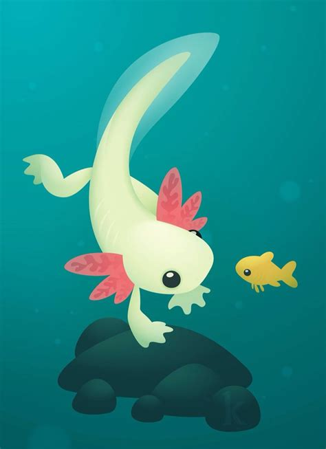 axolotl wallpapers greepx whatsapp