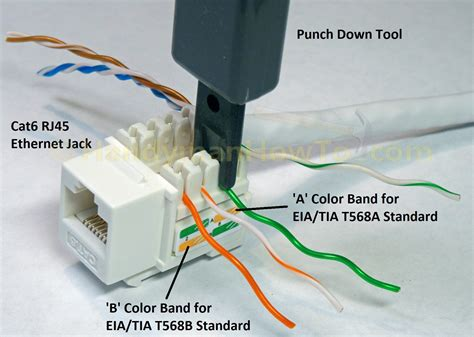 How Wire Cat Ethernet Plug Handymanhowto
