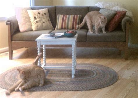 Cat Proof Upholstery Fabric by 17 Best Images About Cat Pet Proofing On Cat