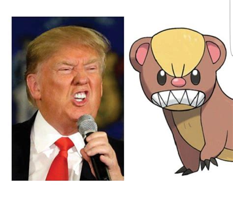 donald trump comparison yungoos trump   meme
