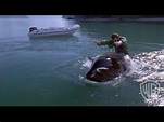 Free Willy 3: The Rescue (1997) - Watch Online Videos HD ...