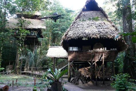 Canopée Guyane