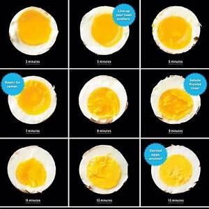 Boiled Egg Diagram