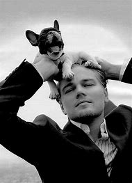 Leonardo DiCaprio and Puppy