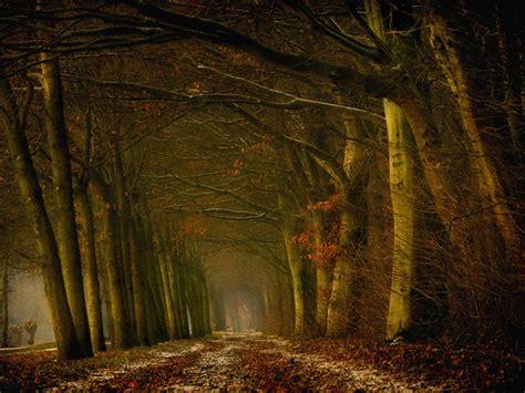 nature photography  lars van de goor incredible snaps
