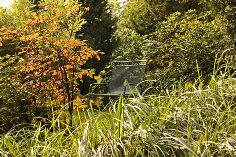 Botanischer Garten Ibbenbüren by Ibbenb 252 Ren Botanischer Garten Loismann Muensterland De