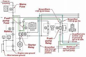 Yamaha Raptor 660 Wiring Diagram  Yamaha  Wiring Diagram