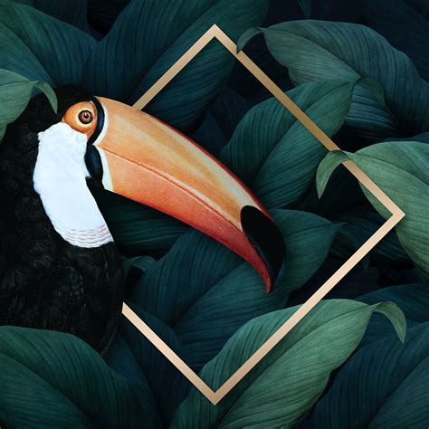 Download premium illustration of Tropical macaw on a ...