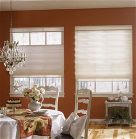 Considerations Before You Buy Roman Shades  The Home