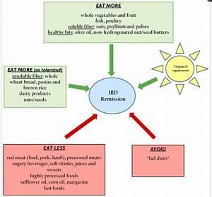 Inflammatory Bowel Disease  Ibd  And Treatment Explained