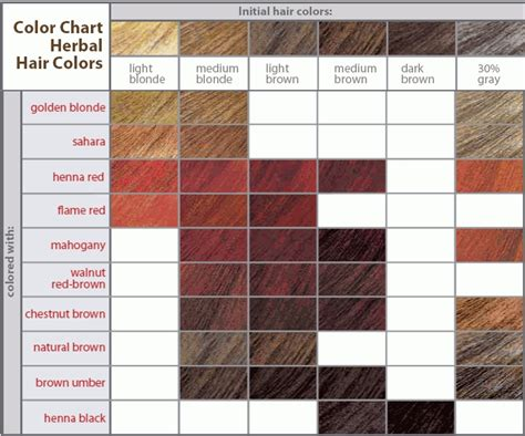 Hair Color Brown Shades by Brown Hair Color Shades How To Choose The Best Hair In
