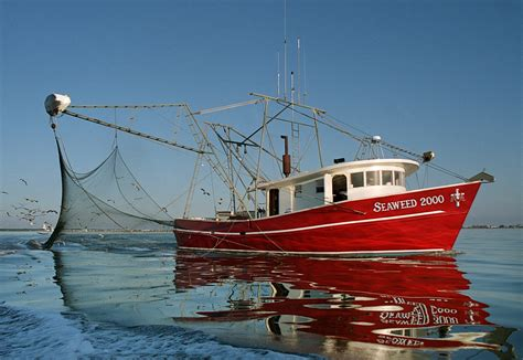 Commercial Shrimp Boats For Sale In Mississippi by Mississippi Flooding To Have Impact On Gulf Seafood