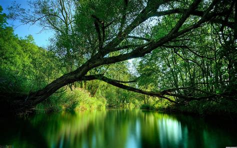 Nature, River Wallpapers Hd / Desktop And Mobile Backgrounds