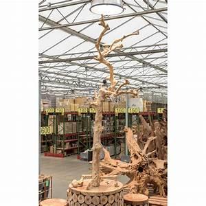 Tronc Bois Flotté : vente de tronc bois flott ~ Dallasstarsshop.com Idées de Décoration