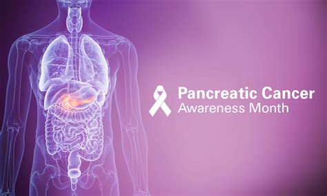 Proton Therapy Pancreatic Cancer protonpals md proton therapy center pancreatic