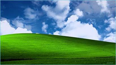 Xp Windows Animated Backgrounds Bliss Microsoft Desktop