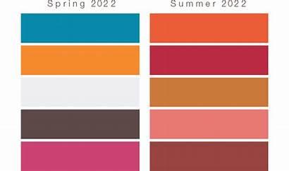 Trends Basf Cosmetic Pantone Colors Palette Bold