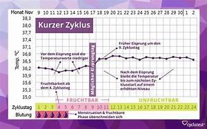 Zyklus Eisprung Berechnen : kann man w hrend der periode schwanger werden ~ Themetempest.com Abrechnung