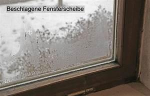 Beschlagene Fenster Innen : beschlagene fenster tauwasser auf fenster baugutachter klaus schweikl ~ Bigdaddyawards.com Haus und Dekorationen