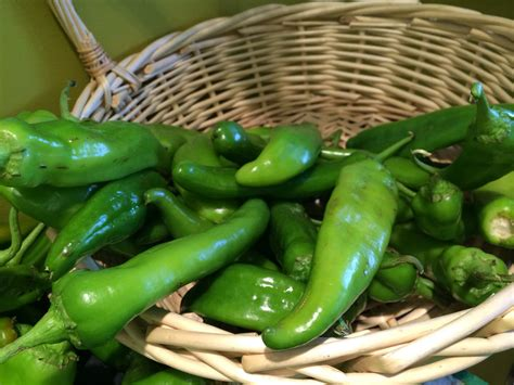 green chiles hatch green chile sauce brand new vegan