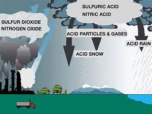 Acid Rain Illustration