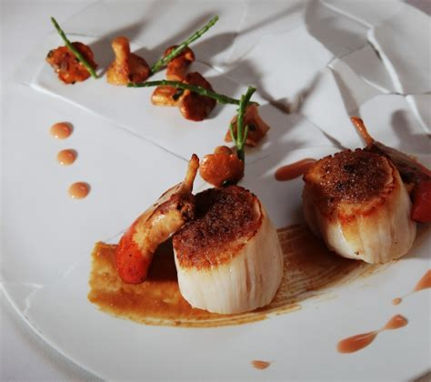 cuisiner le homard 17 succulentes recettes de chefs du sud ouest distingués