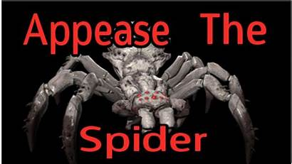Spider Ever Scariest Appease