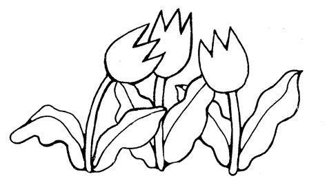 tulip clipart black and white mormon tulips
