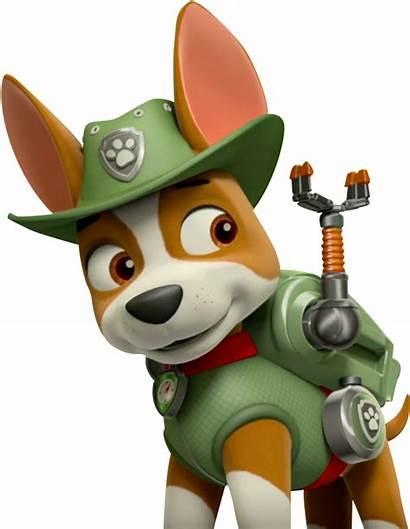 Paw Patrol Tracker Canina Patrulha Creepypasta Zuma