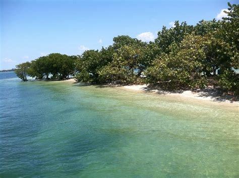 fishing miami spots florida near coordinates gps boat coral