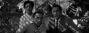 Rise Of The Movie Monster: Part 4 - Invasion Of The Body Snatchers | Gorilla Film Online