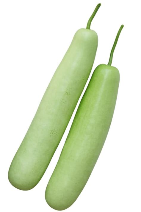 dash diet recipes bottle gourd