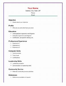 basic academic resume a4 template With computer skills resume example