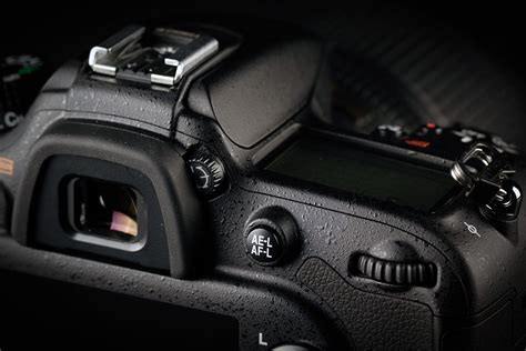 nikon  review  updated favorite   affordable