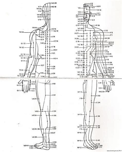 meridien du corps humain ii l acupuncture une vision diff 233 rente de la m 233 decine actuelle la m 233 decine chinoise