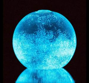 Dino Sphere - Bioluminescent Plankton Mini Aquarium - The