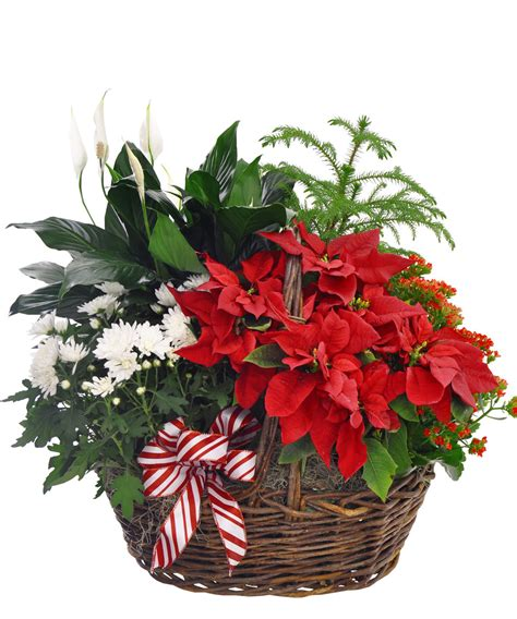 christmas flowers centerpieces holiday gift guide
