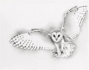ORIGINAL Pencil Flying Barn Owl Drawing, Owl art, Barn Owl ...