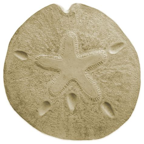sand dollar stepping mold style