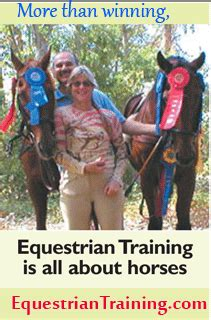 the sweetest by jacko equestriantraining hit air equestriantrain
